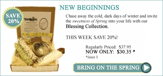 Blessing Collection - Blessed Sage and Sacred Resins for smudging