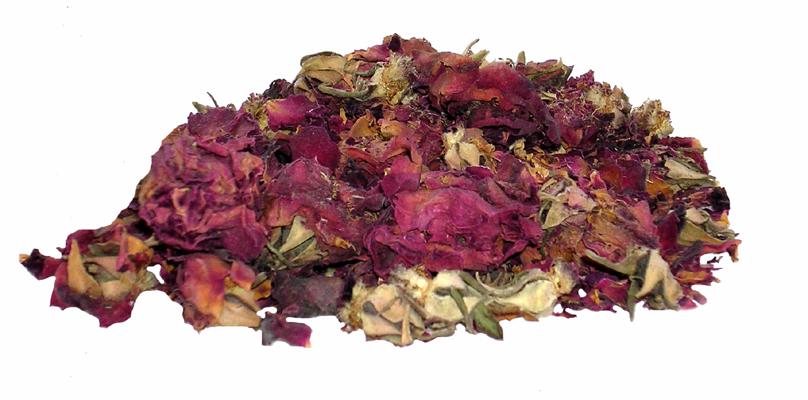 Red Rosebuds & Petals - Rosa de Castilla