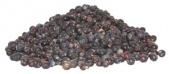 JuniperBerries.jpg