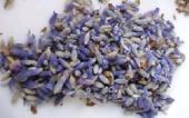 lavenderbuds.jpg